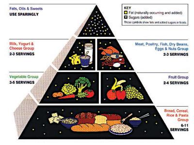 Food-Pyramid-.jpg
